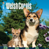 Welsh Corgis - 2017 Mini Calendar Kalendarze