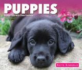 Keith Kimberlin Puppies - 2017 Boxed Calendar Calendars