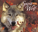 Spirit of the Wolf - 2017 Boxed Calendar Calendars