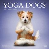 Yoga Dogs - 2017 Calendar Kalendarze