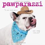 Pawparazzi - 2017 Calendar Calendários
