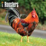 Roosters - 2017 Calendar Calendars
