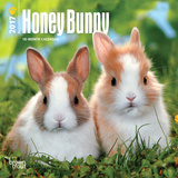 Honey Bunny - 2017 Mini Calendar Calendars