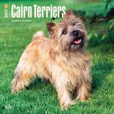 Cairn Terriers - 2017 Calendar Kalendarze