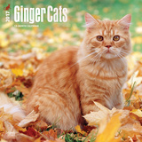 Ginger Cats - 2017 Calendar Calendars