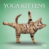 Yoga Kittens - 2017 Mini Calendar Calendars