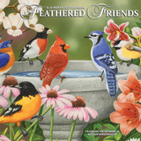 Feathered Friends - 2017 Mini Calendar Calendars