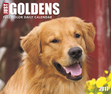 Just Goldens - 2017 Boxed Calendar Calendars