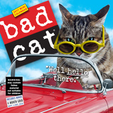 Bad Cat - 2017 Mini Wall Calendar Calendários