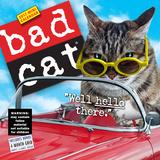Bad Cat(2017年ミニ壁掛けカレンダー) カレンダー