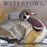 Waterfowl - 2017 Calendar - Takvimler