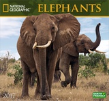 National Geographic Elephants - 2017 Calendar Calendriers