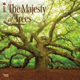 The Majesty of Trees - 2017 Calendar Calendars