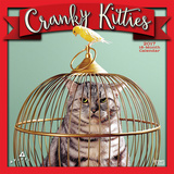 Cranky Kitties - 2017 Calendar Calendars