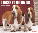 Just Basset Hounds - 2017 Boxed Calendar Kalendarze