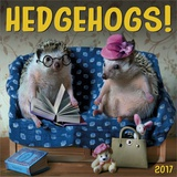 Hedgehogs - 2017 Calendar Calendars