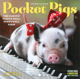 Pocket Pigs - 2017 Mini Wall Calendar Calendars
