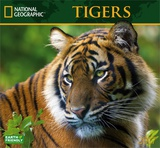 National Geographic Tigers - 2017 Calendar Calendars
