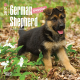 German Shepherd Puppies - 2017 Mini Calendar Calendars