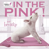 In the Pink! - 2017 Calendar Calendars