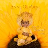 Anne Geddes - 2017 Calendar Calendars
