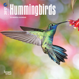 Hummingbirds - 2017 Mini Calendar Calendars