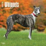 Whippets - 2017 Calendar Kalenders