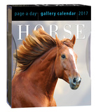 Horse Page-A-Day Gallery - 2017 Boxed Calendar Calendars
