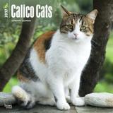 Calico Cats - 2017 Calendar Calendars