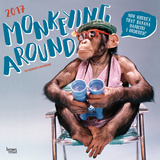 Monkeying Around - 2017 Calendar Kalendarze
