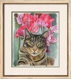 Cat with Sweet Peas Framed Giclee Print by Anne Robinson