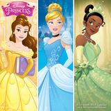Disney Princess - 2017 Calendar Calendars