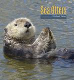 Sea Otters - 2017 Calendar Calendriers