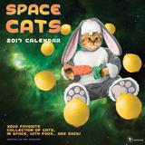 Space Cats - 2017 Calendar Kalendarze