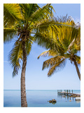 Florida Keys Lovely Oceanside Print by Melanie Viola