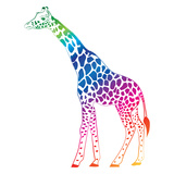 Giraffe Colorful Vector Posters by  olive1976