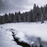 Bavarian Winter'S Tale VII Print by Melanie Viola