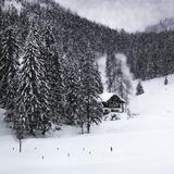 Bavarian Winter'S Tale IX Giclée-trykk av Melanie Viola