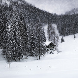 Bavarian Winter'S Tale IX Poster di Melanie Viola