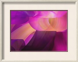 Purple 2 Framed Photographic Print by Chris Harvey