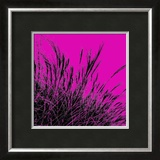 Grass (magenta), c.2011 Prints by Davide Polla