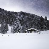 Bavarian Winter'S Tale VIII Giclée-trykk av Melanie Viola