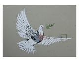 Dove Prints by  Banksy