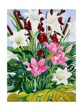 Lilies and Bullrushes Giclee Print by Christopher Ryland