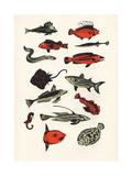 Orange Plain Fish, 2016 Giclee Print by Eliza Southwood