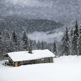 Bavarian Winter'S Tale II Posters par Melanie Viola