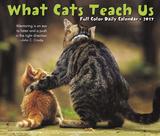 What Cats Teach Us - 2017 Boxed Calendar Calendars