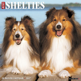 Just Shelties - 2017 Calendar Calendars