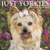 Just Yorkies - 2017 Calendar Calendriers