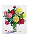 June Roses Giclee Print by Christopher Ryland